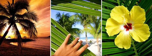 Buy and sell Belize Real estate with Belize Property Agents