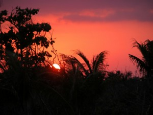 Belize is famous for it's relaxing and alluring jungle sunsets