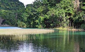 25.6 Acres of Belize Real Estate on the Hummingbird Highway  No. 1430