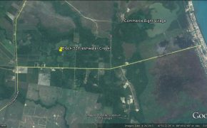 Prime Belize Real Estate for sale on Hopkins Road!! No1442