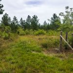 33.6 Acres PRIME Land With 1800′ Frontage on Coastal Highway! No. 1449