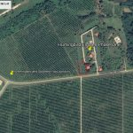 1/2 ACRE PRIME COMMERCIAL LOT NEAR BUSIEST JUNCTION IN SOUTHERN BELIZE! NO. 1440